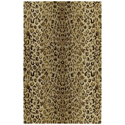 Fedna Mocha Rug Rug Size: Rectangle 8 x 11