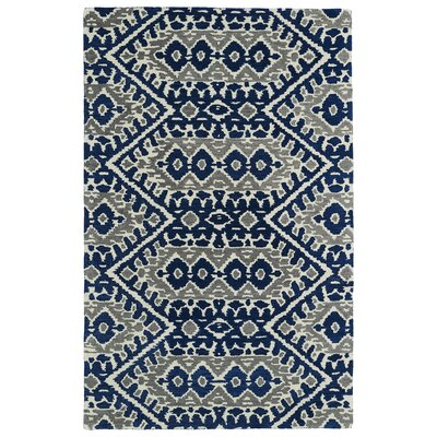 Kasa Blue/Grey Area Rug Rug Size: Rectangle 36 x 56