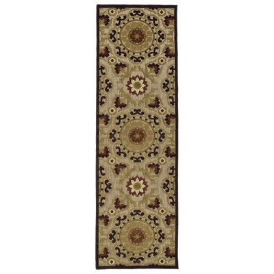 Mumtaz Machine Woven Brown Indoor/Outdoor Area Rug Rug Size: Runner 26 x 71