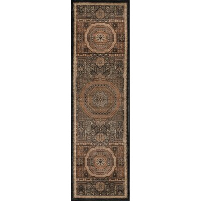 Tulisa Brown Area Rug Rug Size: Runner 23 x 78