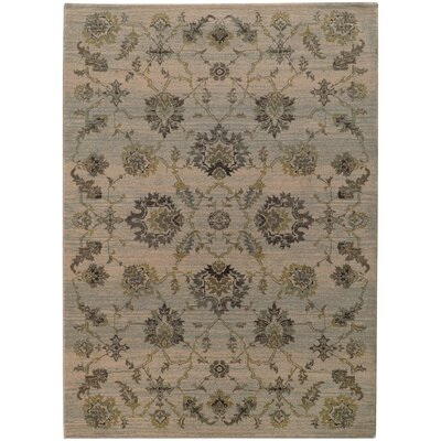 Gast Gray/Green Area Rug Rug Size: Rectangle 53 x 76
