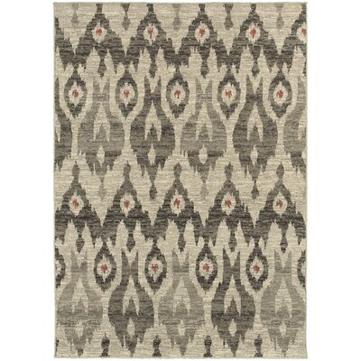 Petrina Ivory/Gray Area Rug Rug Size: Rectangle 53 x 76
