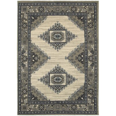 Petrina Beige/Gray Area Rug Rug Size: Rectangle 910 x 1210