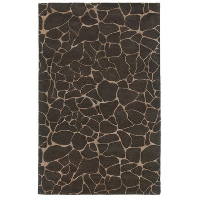 Sheehan Grey Area Rug Rug Size: Rectangle 36 x 56