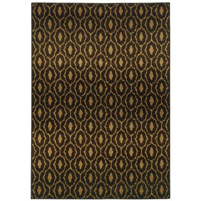 Prince Black/Brown Area Rug Rug Size: 3'10
