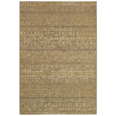 Amaranth Sage Grey Overture Rug Rug Size: 311 x 56