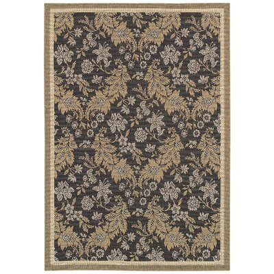 Kahila Gray/Brown Area Rug Rug Size: 53 x 76