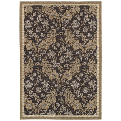 Alosio Gray/Brown Area Rug Rug Size: 53 x 76