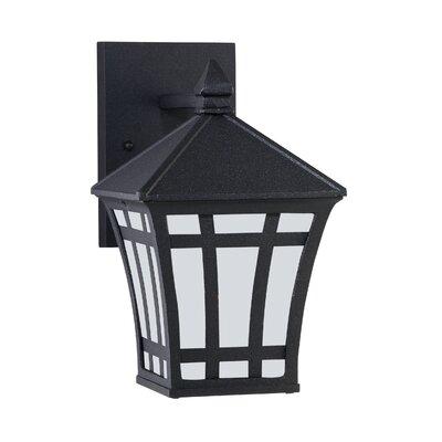 Brette 1-Light Outdoor Wall Lantern