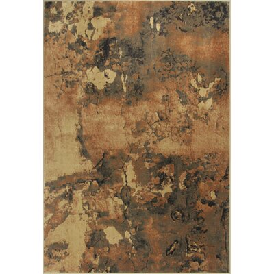 Macced Mocha Palette Area Rug Rug Size: Runner 22 x 611