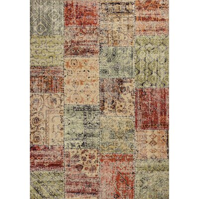Rouidate Patchwork Area Rug Rug Size: Rectangle 27 x 411