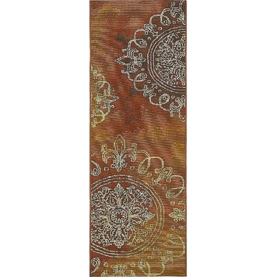Jamie Rust Red Indoor/Outdoor Area Rug Rug Size: Runner 2 x 6