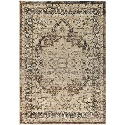 Cassie Camel/Dark Blue Area Rug Rug Size: Rectangle 2' x 3'