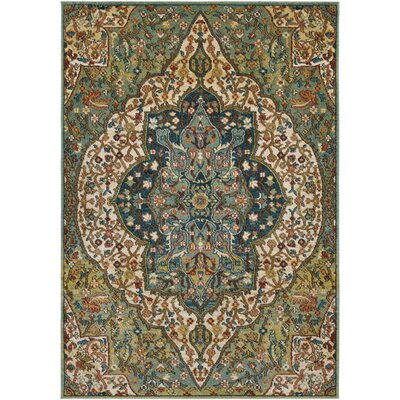 Naranjo Sea Foam/Rust Area Rug Rug Size: 93 x 126