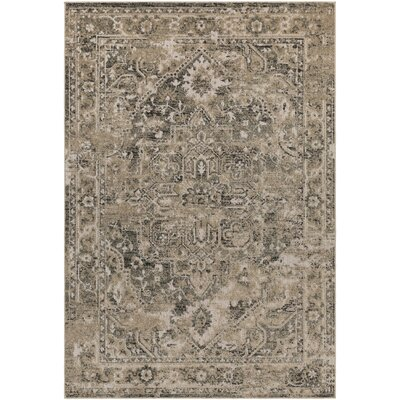 Angus Khaki/Black Indoor/Outdoor Area Rug Rug Size: 53 x 73