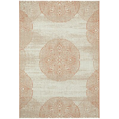 Malayah Gray/Brown Outdoor Area Rug Rug Size: Rectangle 53 x 76
