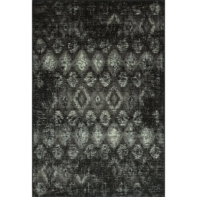 Ashim Black Area Rug Rug Size: Rectangle 411 x 75