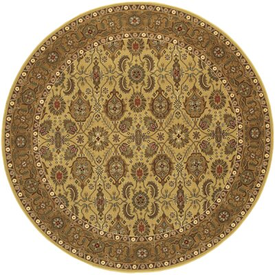 Chakra All Over Vase Hazelnut/Beige Area Rug Rug Size: Round 46