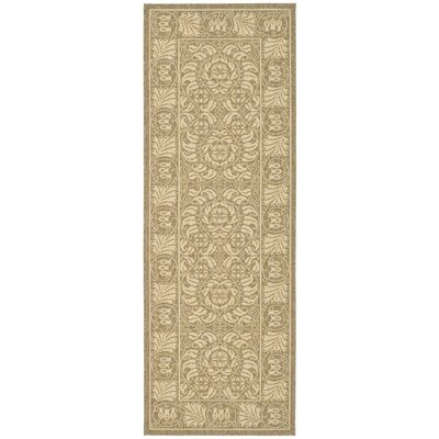 Catori Coffee/Mais Outdoor Rug Rug Size: Runner 27 x 5