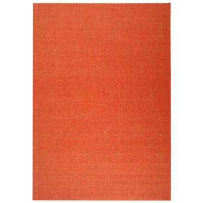 Catori Red Solid Outdoor Area Rug Rug Size: 67 x 96