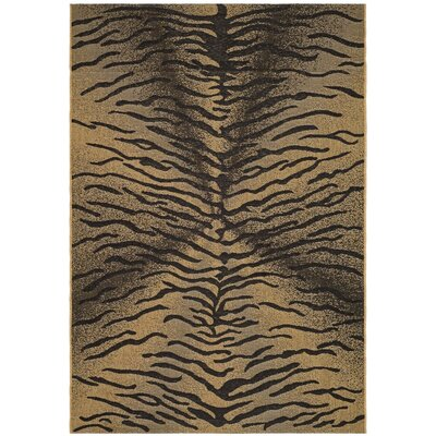Catori Light Black/Natural Outdoor Rug Rug Size: Rectangle 53 x 77