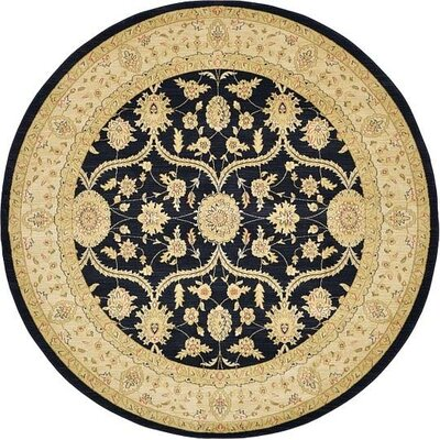Jamar Black Area Rug Rug Size: Rectangle 8 x 11