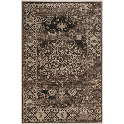 Ateao Brown Area Rug Rug Size: 9 x 12