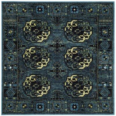 Parthenia Blue Area Rug Rug Size: Square 67