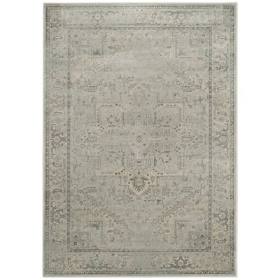 Emily Light Blue Area Rug Rug Size: Rectangle 4 x 57