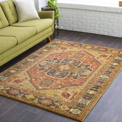Naranjo Traditional Brown Area Rug Rug Size: 7 10 x 10 3