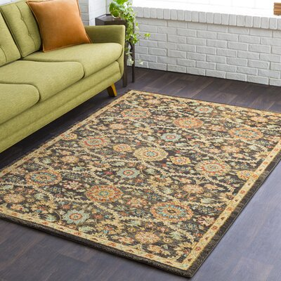 Naranjo Market Brown Area Rug Rug Size: Rectangle 3 11 x 5 7