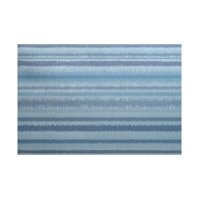 Rafia Blue/Gray Indoor/Outdoor Area Rug Rug Size: 2 x 3