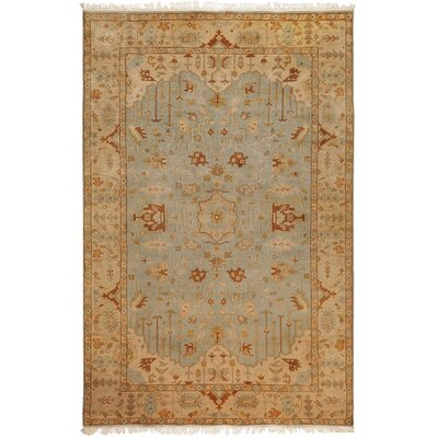 Adrien Light Blue/Beige Area Rug Rug Size: Rectangle 2' x 3'