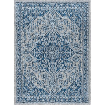 Ares Traditional Aqua Indoor/Outdoor Area Rug Rug Size: 67 x 96