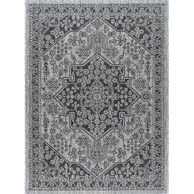 Ares Traditional Black Indoor/Outdoor Area Rug Rug Size: 53 x 73