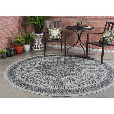 Ares Traditional Black Indoor/Outdoor Area Rug Rug Size: Round 710