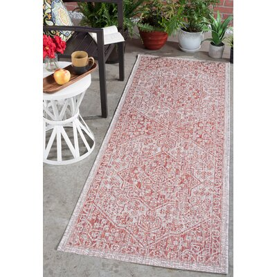 Ares Traditional Terra Indoor/Outdoor Area Rug Rug Size: Runner 27 x 73