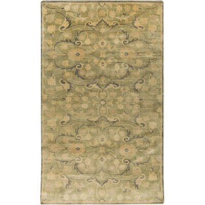 Bissell Olive Area Rug Rug Size: Rectangle 39 x 59