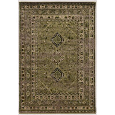 Shelie Goravan Green Area Rug Rug Size: Rectangle 8 x 106