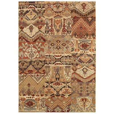 Scarlett Phoenix Rug Rug Size: Rectangle 53 x 76