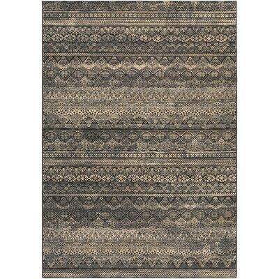 Amasa Black/Gray Area Rug Rug Size: 710 x 112