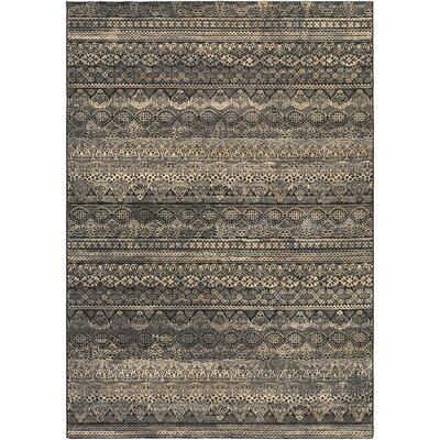 Amasa Black/Gray Area Rug Rug Size: Rectangle 37 x 53