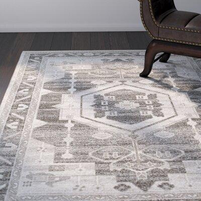 Olatayo Gray/Taupe Area Rug Rug Size: 79 x 95