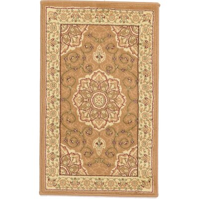 Jenna Light Brown Area Rug Color: Orange