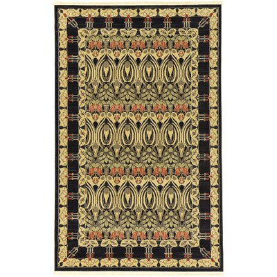Fonciere Black Area Rug Rug Size: Rectangle 33 x 53
