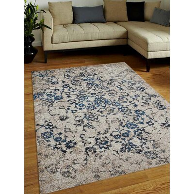 Arakaki Beige/Blue Area Rug Rug Size: Rectangle 4 x 6