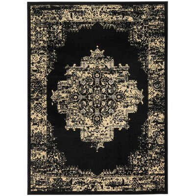 Nassirah Black Indoor Area Rug Rug Size: Rectangle 53 x 73