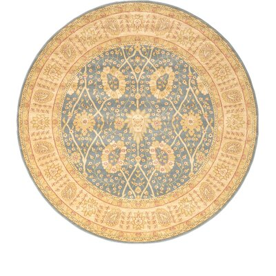 Fonciere Light Blue Area Rug Rug Size: Round 8