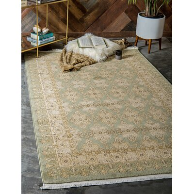 Fonciere Light Green Area Rug Rug Size: Round 6