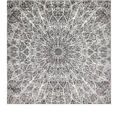 Keswick Dark Gray/Ivory Area Rug Rug Size: Square 8